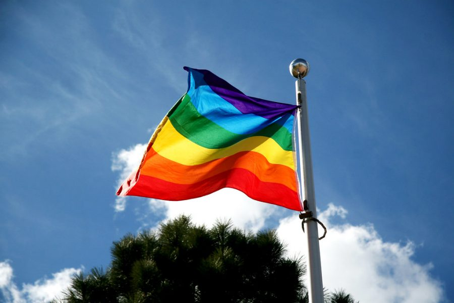 Rainbow flag as seen flying outside Campus Activity Centre on April 9, 2014.