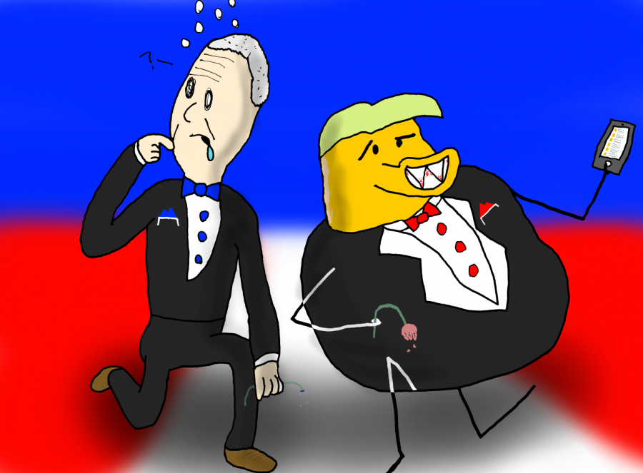 Cartoon of our choices for president during the 2020 election.