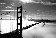 The Golden Gate Bridge is the picturesque setting for many suicides each year.  Eric Steel captures a number of people making the final plummet to their death, in his new documentary The Bridge. ( www.sunna.info)