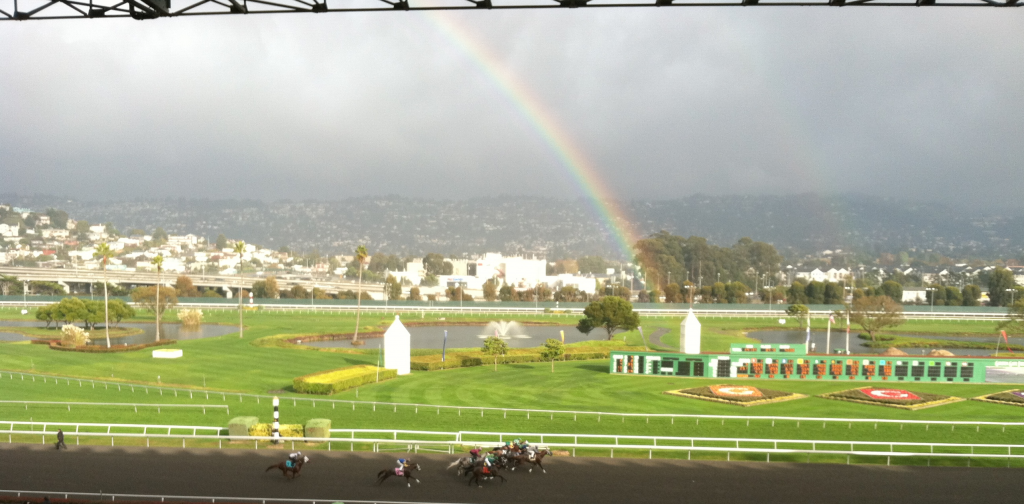 Golden+Gate+Fields+is+the+best+Bay+Are+spot+for+horse+racing+since+the+closure+of+Bay+Meadows.+%28Blair+Hardee%29
