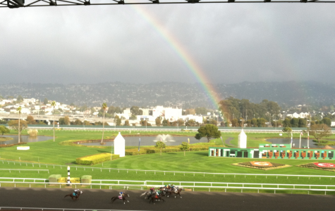 Out and About: Golden Gate Fields' Dollar Day