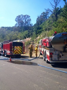 Grass fire reported at Sneath Lane