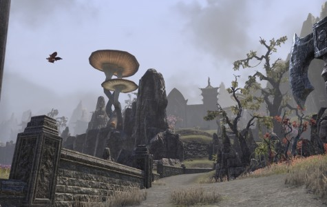 """The Elder Scrolls"" Online Beta Impressions"