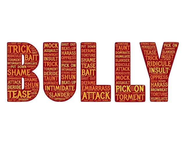 Time to understand and end bullying once and for all