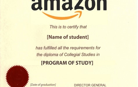Amazon to offer potential online education