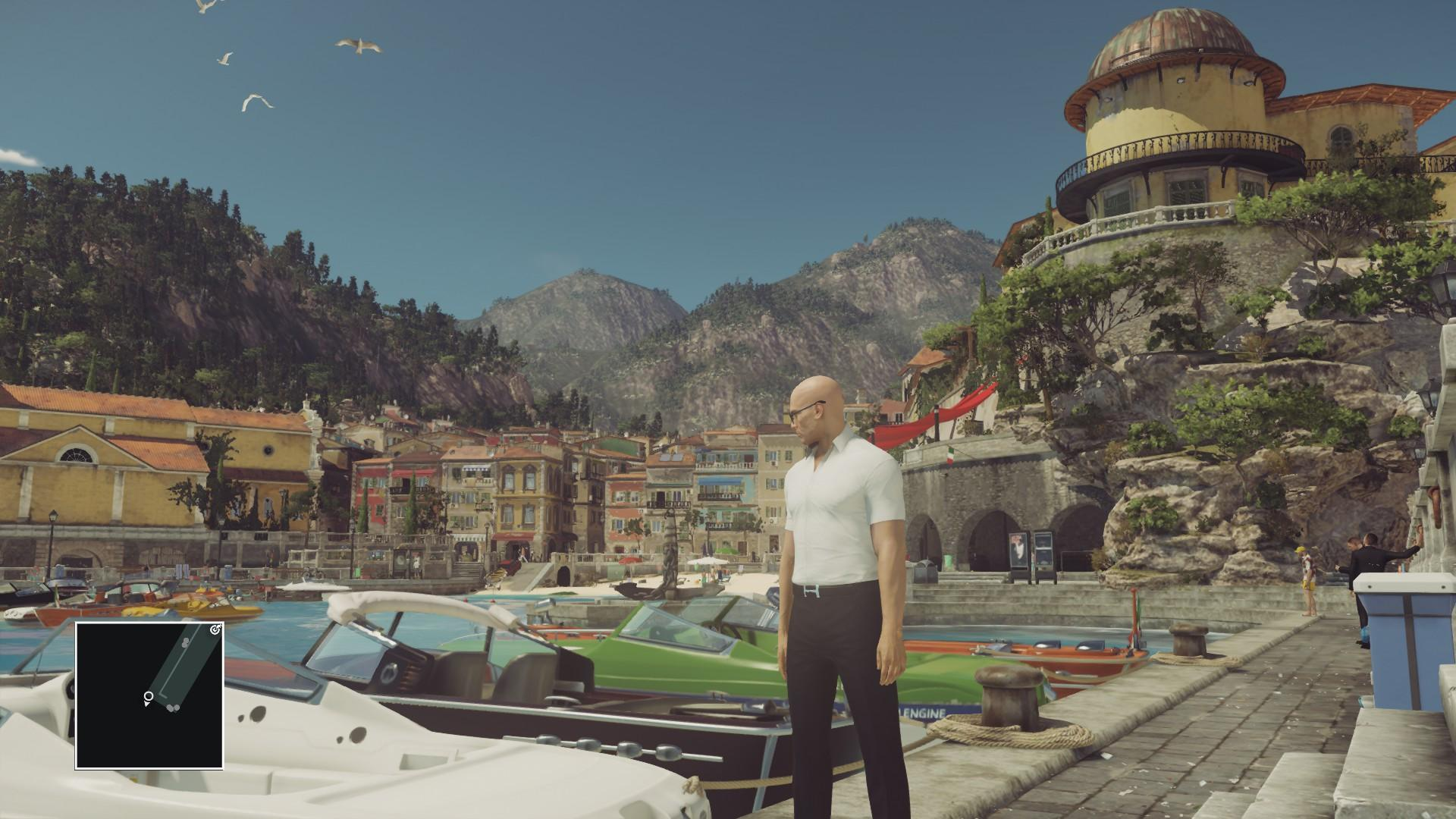 A screenshot of Agent 47 taking in the scenery.