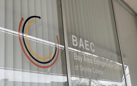 BAEC Reaches Out to Skyline Students