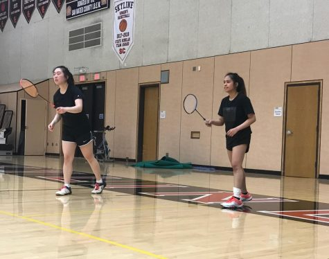 Spring sports recap: badminton and baseball