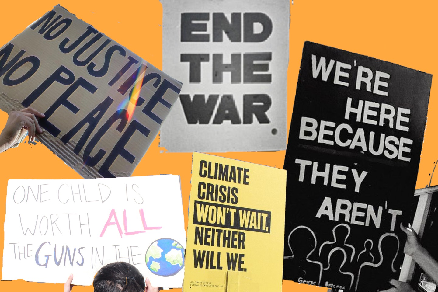 A compilation of signs from various protests.