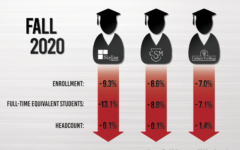 Skyline College has had a slight increase in the number of enrolled students for spring 2021, but has lower enrollments in courses this semester